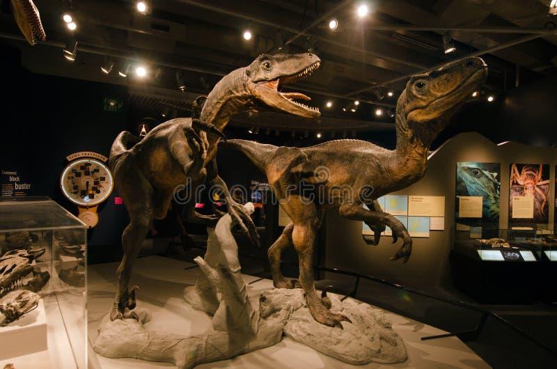 Download Dinossauros imagem editorial. Imagem de enorme, dino - 29849530