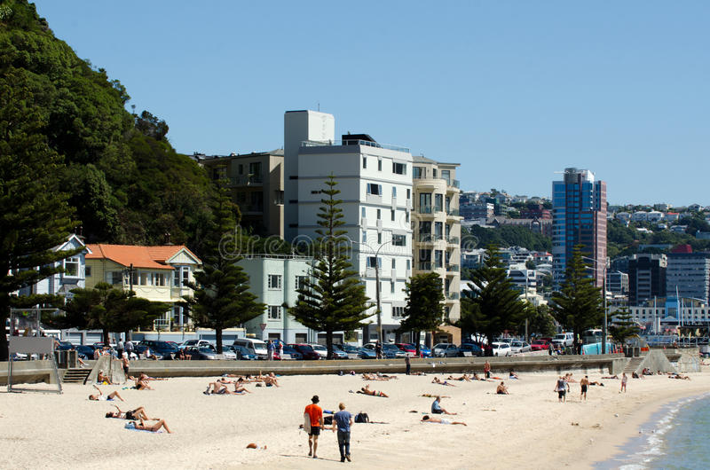 Paysage urbain de Wellington image stock