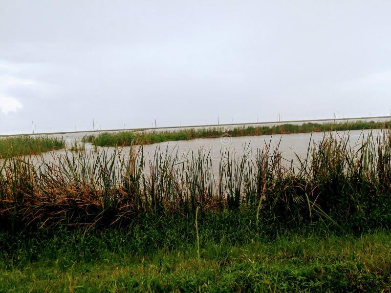 Lake. Wellington, Florida, United States stock photo