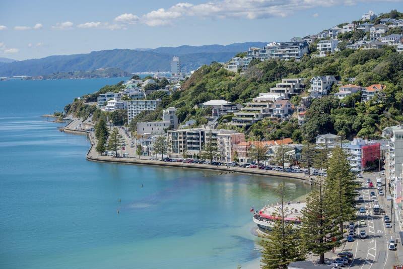 Wellington Harbour and Oriental Bay stock photos