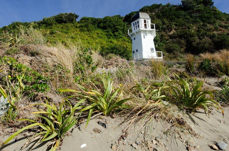 Paesaggio urbano di Wellington immagine stock libera da diritti