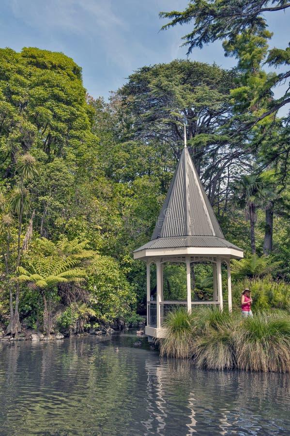 Wellington, Nuova Zelanda - 2 marzo 2016: Lo stagno dell'anatra a Wellington Botanic Garden, Nuova Zelanda fotografia stock