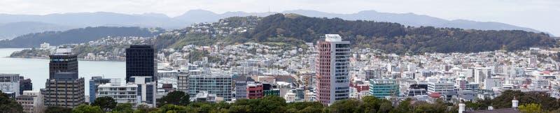 Wellington Panorama fotografia stock libera da diritti