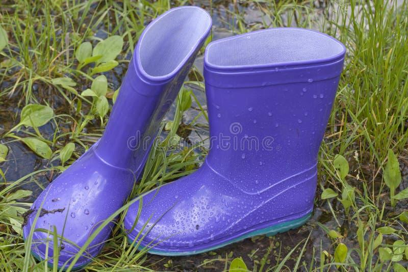 Wellingtons nel giorno piovoso di primavera immagine stock libera da diritti