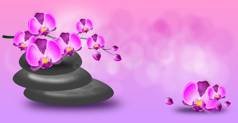 Wellness banner with orchid and spa stones royalty free illustration