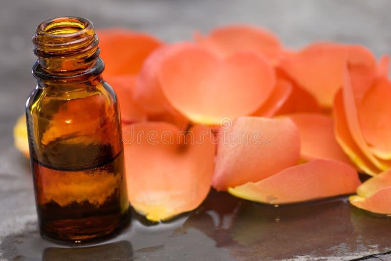 wellness för ro för omsorgshorisontaloljeprodukter royaltyfria foton