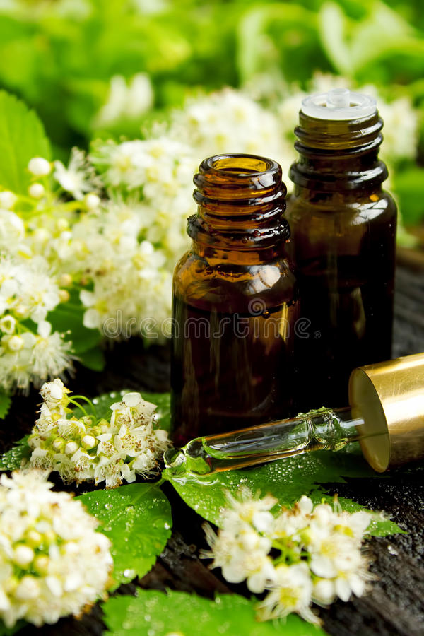 Wellness flower essence stock photography