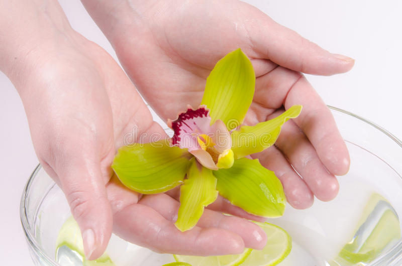 Wellness for hands stock photo