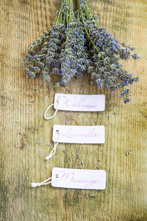 Wellness lavender massage labels with lavender bunch on wooden b. Wellness lavender massage labels with lavender bunch flowers on rustic wooden background royalty free stock photos