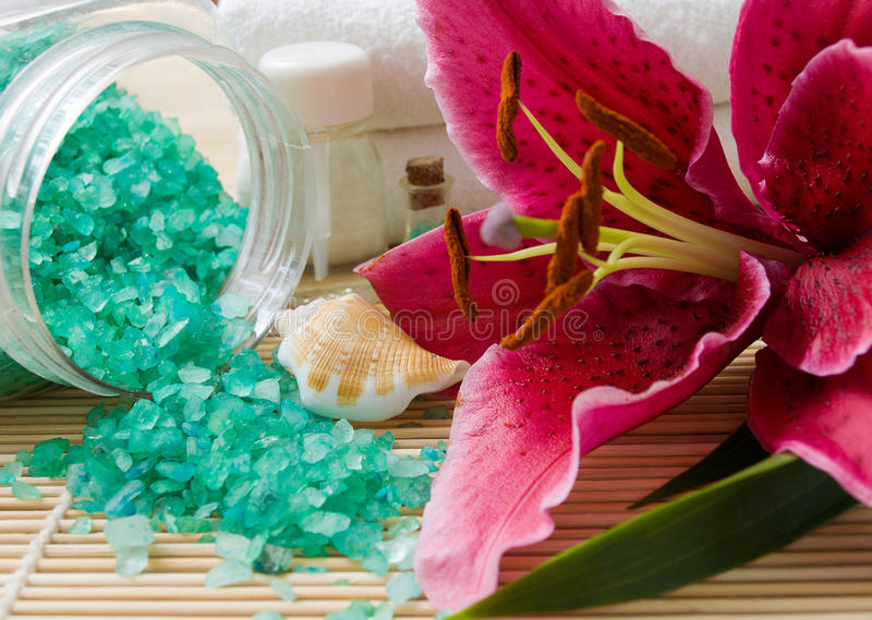 Download Wellness products stock image. Image of relaxation, products - 11333501