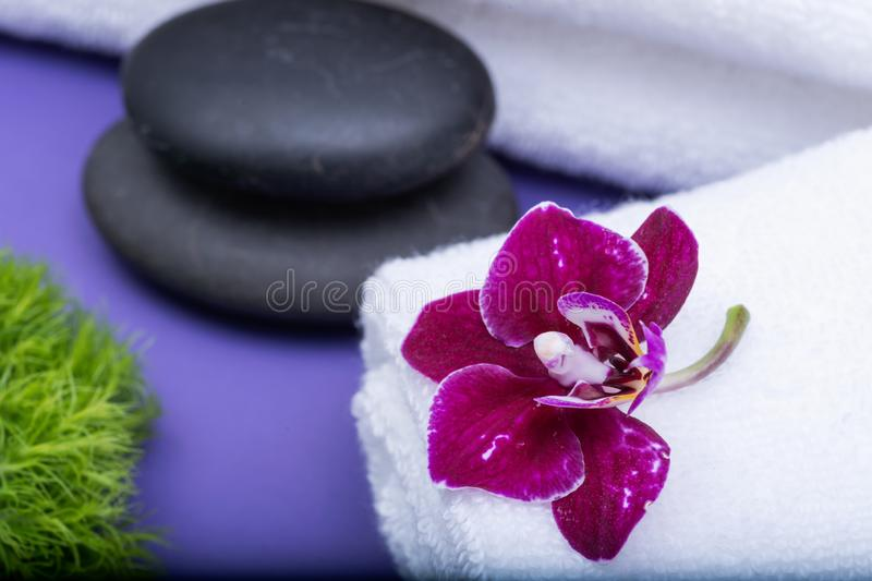 Wellness Relax concept with Spa elements. Rolled up White Towels, Orchid, stacked Basalt Stones, and Dianthus Flowers on purple. Background royalty free stock image