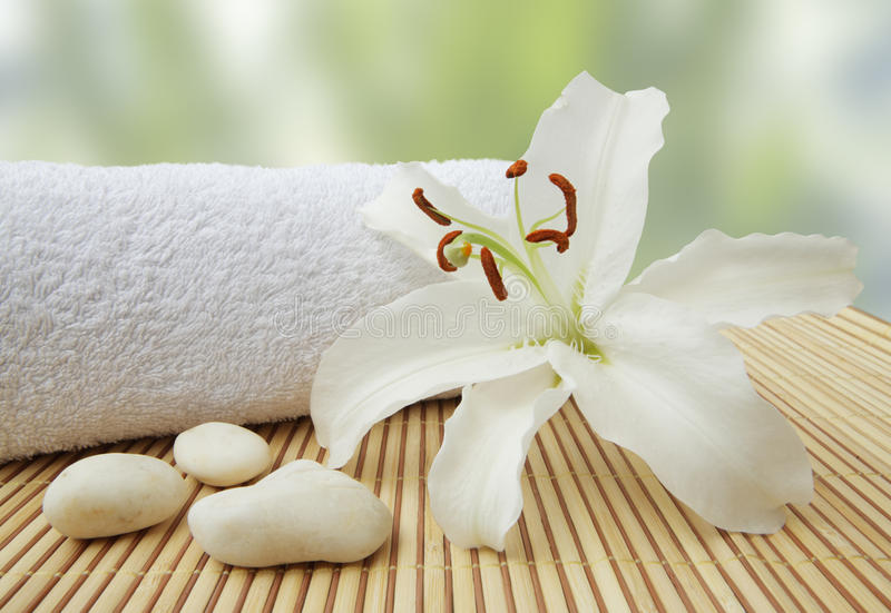 Wellness still life pebbles and white lily. Wellness still life pebbles and white madonna lily, zen stones, studio shot stock images