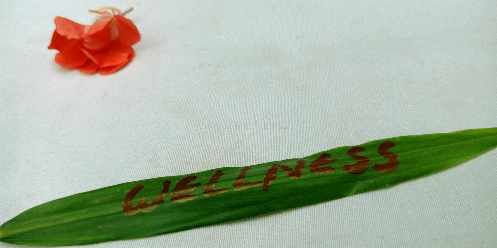 wellness text written on green leaves at white background with red flowers concept stock images