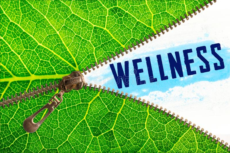 Wellness word under zipper leaf. Open zipper leaf and showing wellness word royalty free stock images