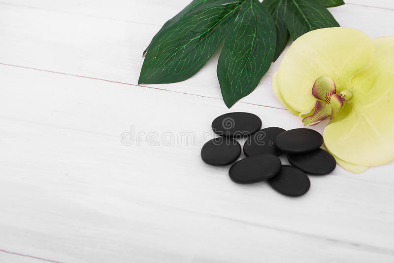 Wellnessbakgrund med orkidén blommar, och brunnsorten bearbetar: kräm lotion, handduk och royaltyfri foto