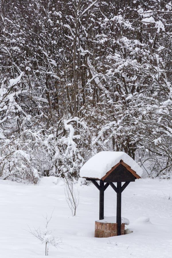 Wellsprig in de de wintertijd stock afbeeldingen