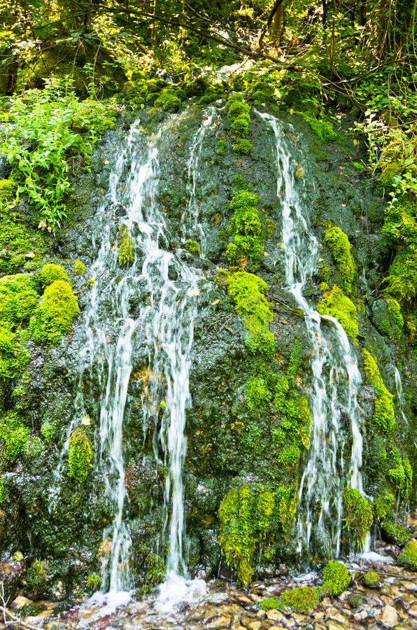 Wellspring με τους μικρούς καταρράκτες στο βουνό της Tara και το εθνικό πάρκο στοκ εικόνα με δικαίωμα ελεύθερης χρήσης