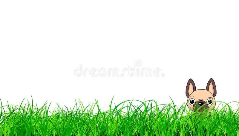 Welpe, der im Gras sich versteckt stock abbildung