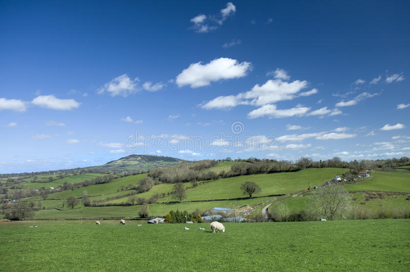 Wels platteland royalty-vrije stock fotografie