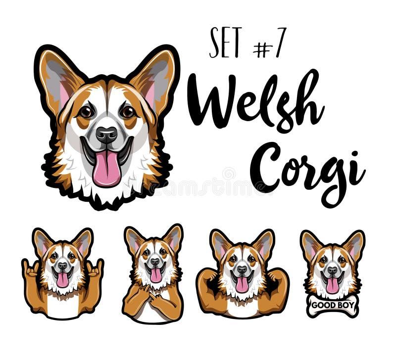 Welse Corgi-hondreeks Hoornengebaar, Middelvinger, Spieren, Been Corgihoofd, gezicht, snuit Wels Corgi-portret Vector royalty-vrije illustratie