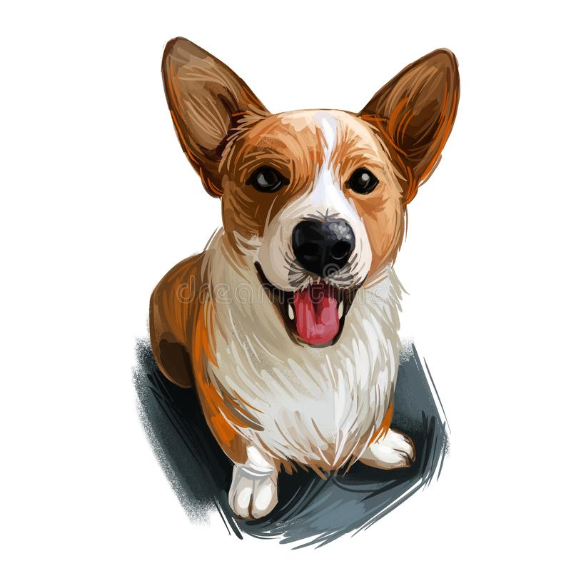 Welsh Corgi, Cardigan dog breed portrait isolated on white. Digital art illustration, animal watercolor drawing of hand drawn. Doggy for web. Pet with short royalty free illustration