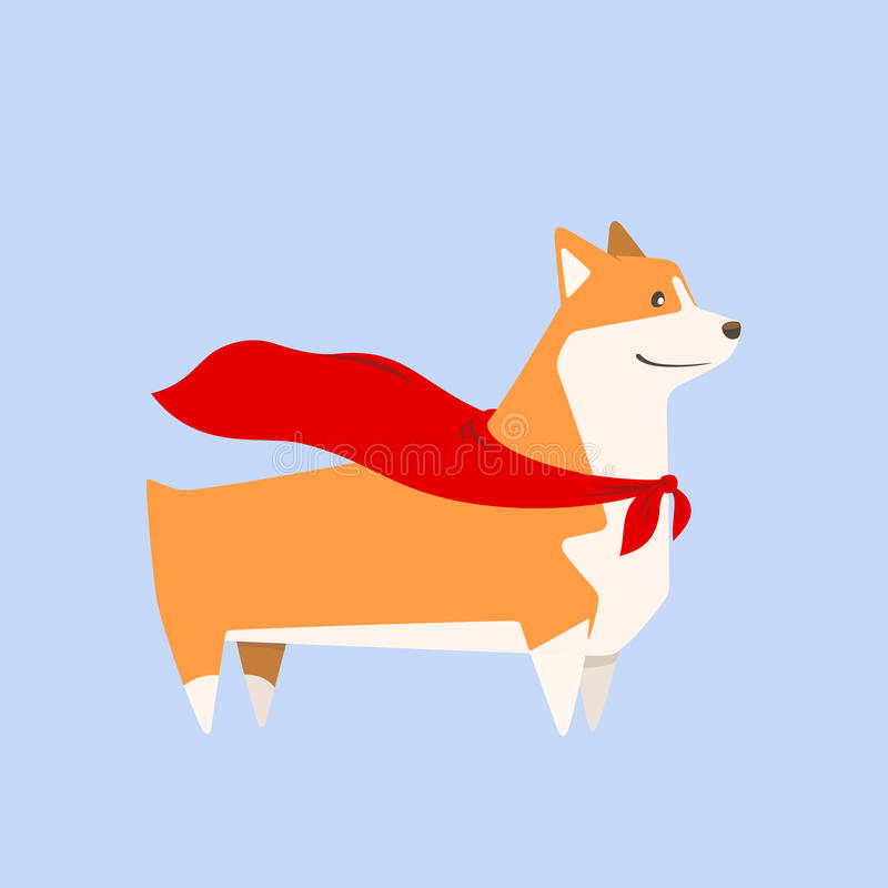 Welsh Corgi dog with superhero cape. Vector vector illustration