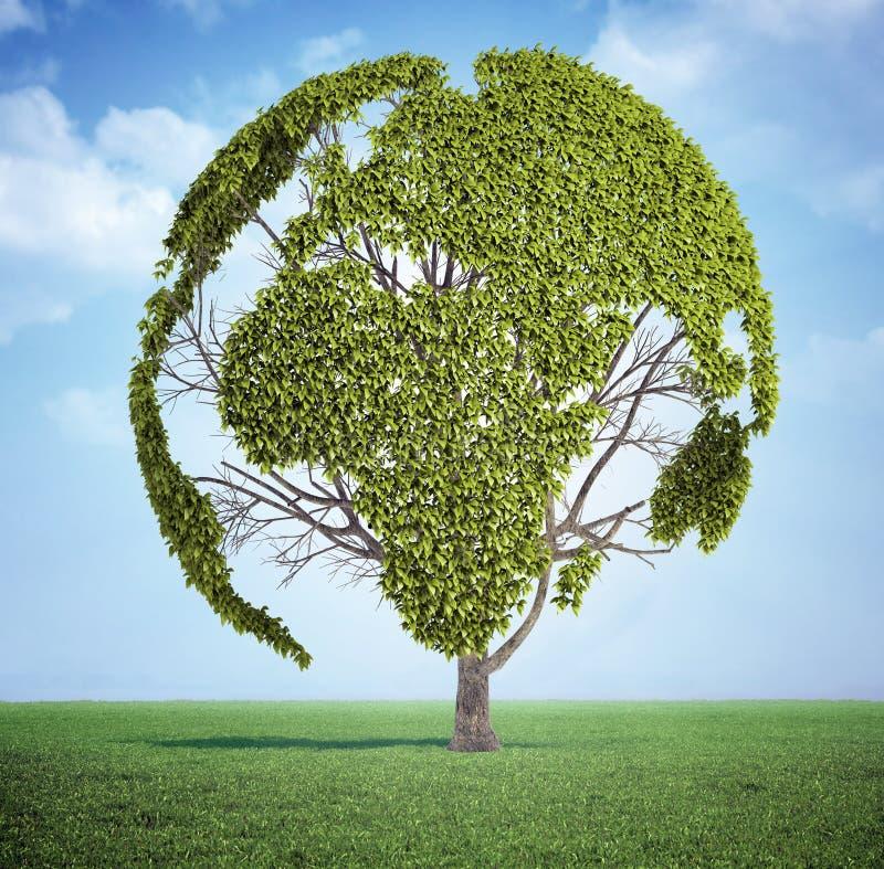 Weltkartenbaum stockfoto