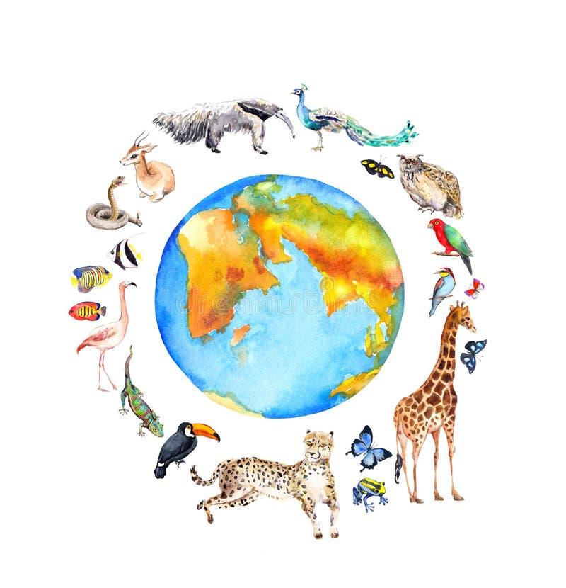 Weltkugel, wilde Tiere, Vögel - Giraffe, Gepard, Tukan, Flamingo und anderer Zoo, Aquarell der wild lebenden Tiere für stock abbildung