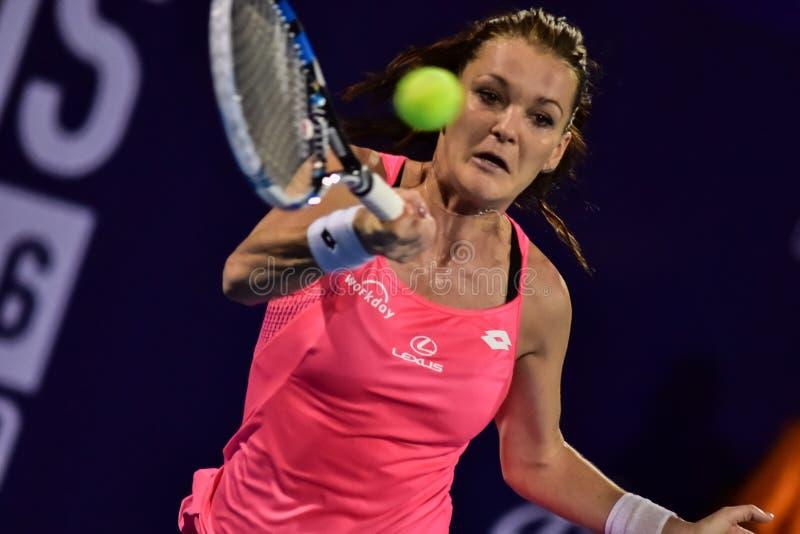 Weltweiblicher Tennisspieler Aginieszka Radwanska stockfotos