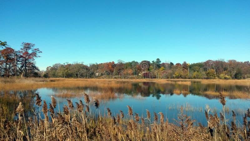 Welwyn-Konserven-Grafschafts-Park Long Island, neues Youk lizenzfreies stockfoto