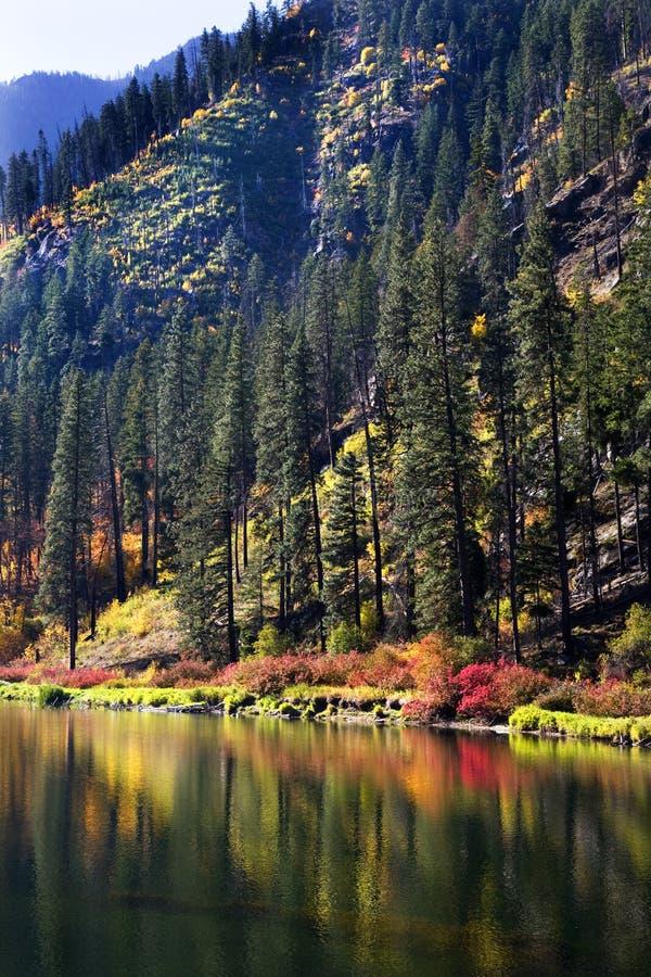 wenatchee реки отражений падения цветов стоковое фото