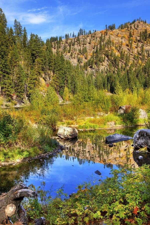 Wenatchee för reflexion för gröna färger för nedgång blå flod Washington royaltyfri bild
