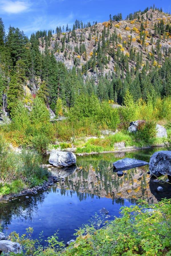 Wenatchee för reflexion för gröna färger för nedgång blå flod Washington arkivbilder