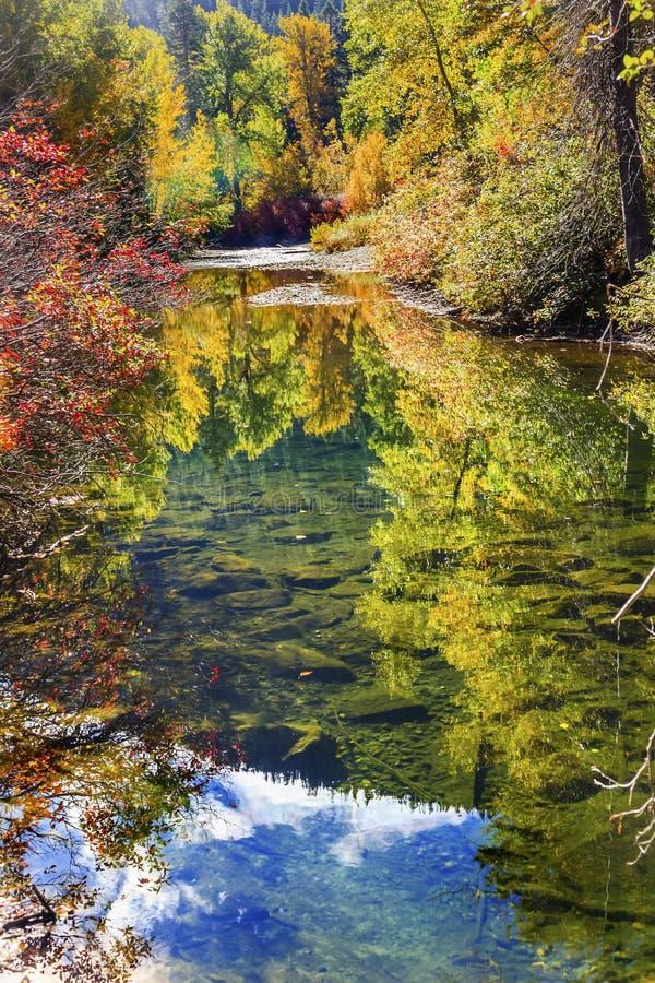 Wenatchee för reflexion för gröna färger för nedgång flod Washington arkivfoto