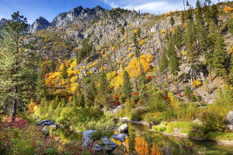 Wenatchee för reflexion för gröna färger för nedgång gul röd flod Washington royaltyfri bild