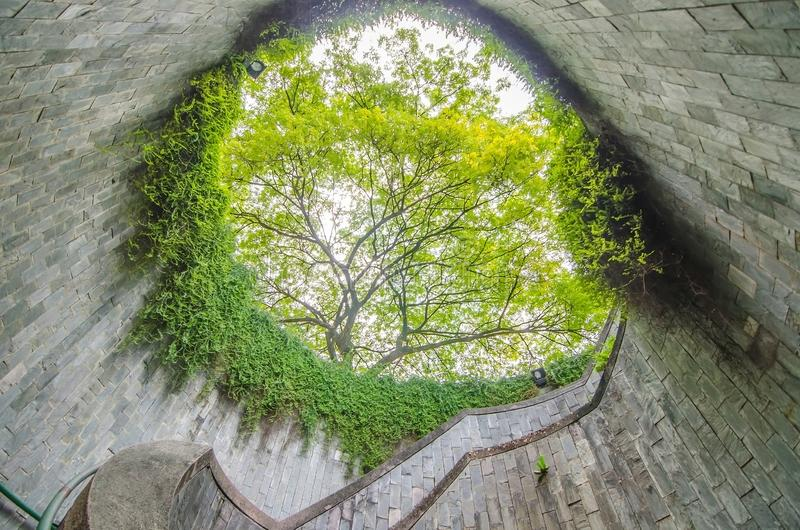 Wendeltreppe der Untertageüberfahrt und der Baum vorbei im Tunnel an Fort-einmachendem Park, Singapur stockfotografie