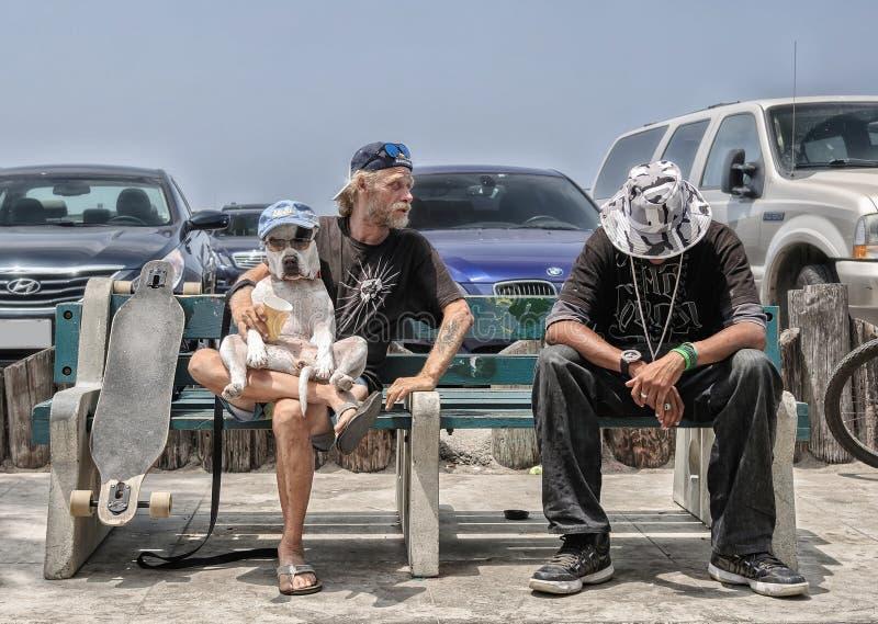 Wenecja Beahc, Los Angeles - OKOŁO CZERWIEC 2014: Dwa przyjaciela otwierają psiego przedstawienie na brzegowej Wenecja plaży okoł obrazy royalty free