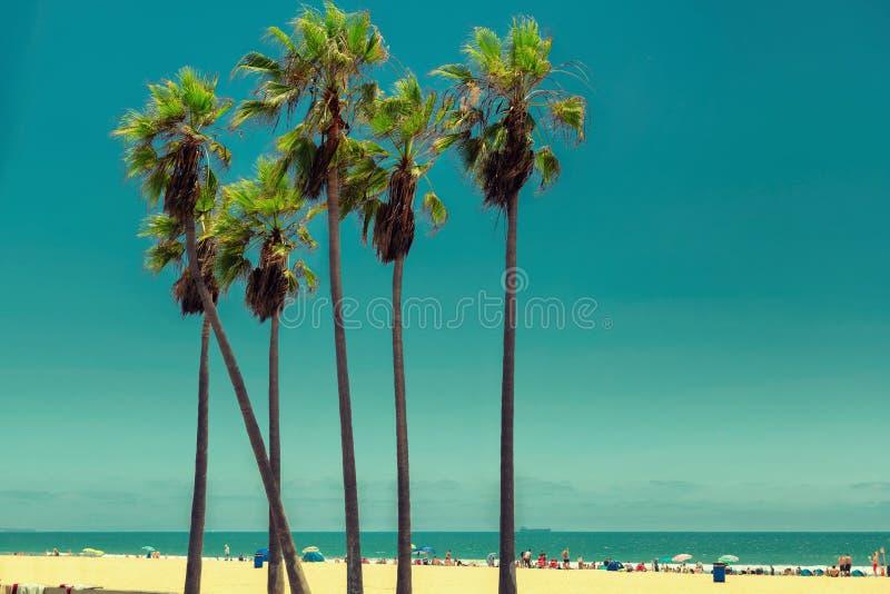 Wenecja plaża fotografia royalty free