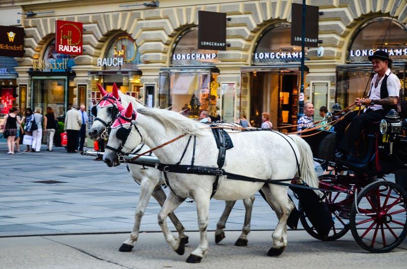 Wenen, Oostenrijk royalty-vrije stock foto's