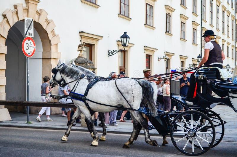 Wenen, Oostenrijk stock foto