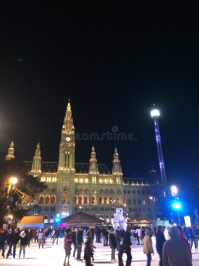 Wenen Rathaus in de Winter stock foto's