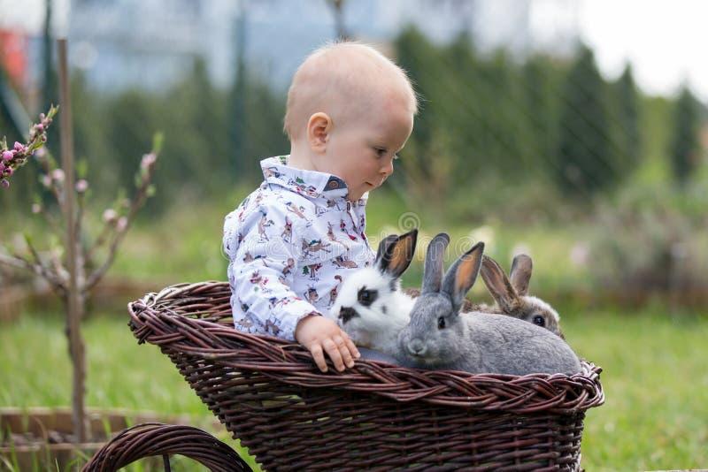 Wenig Baby in der Laufkatze mit nettem Häschen in blühendem Garten stockfoto