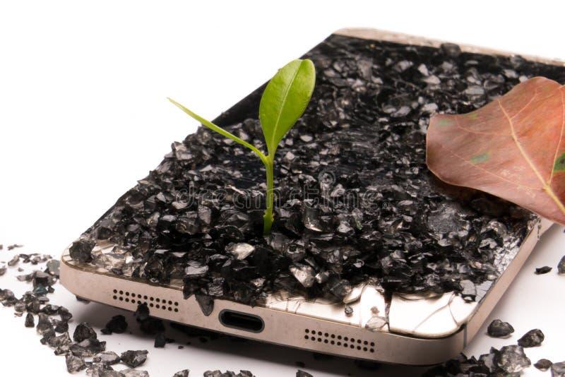 wenig Baum, der auf dem defekten Smartphone-, Umwelt-, Wissens-, Innovations- und Technologiekonzept mit Kopienraum wächst stockfotos