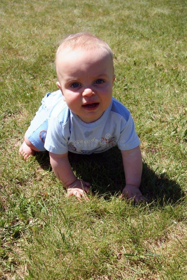 Wenig Cutie im Gras lizenzfreie stockbilder