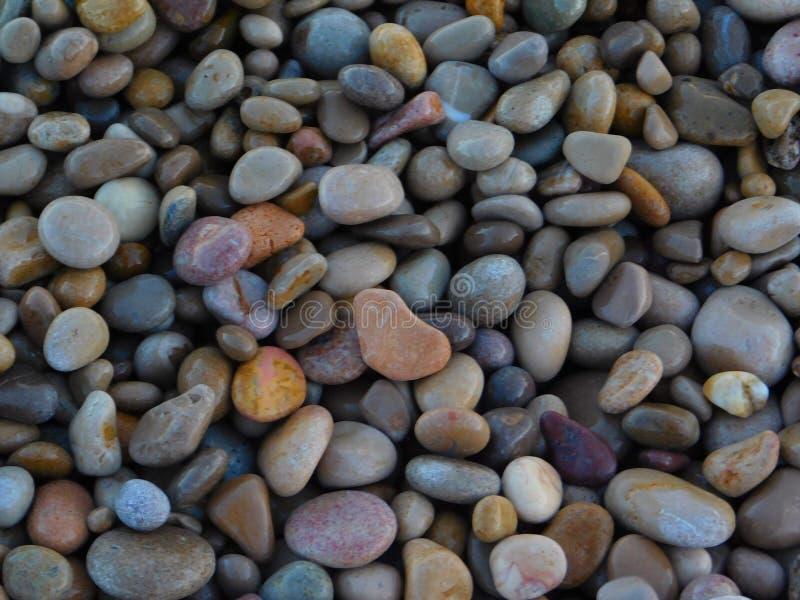 Wenig entsteint auf dem Strand lizenzfreies stockbild
