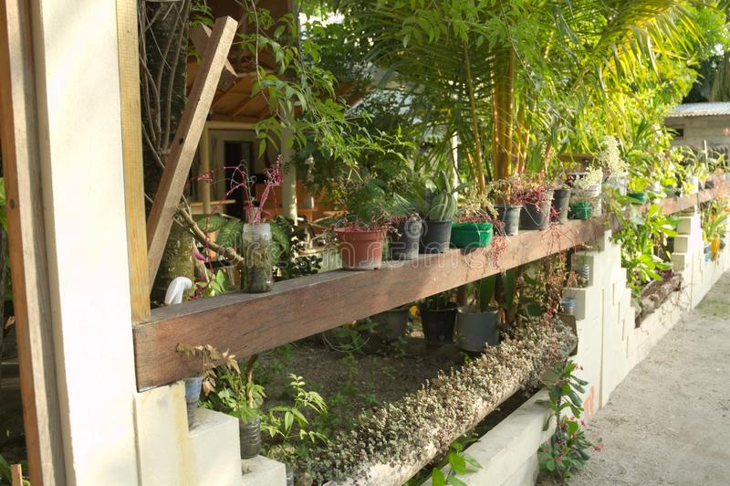 Wenig farbige Vasen im Garten eines maledivischen Hauses stockfoto