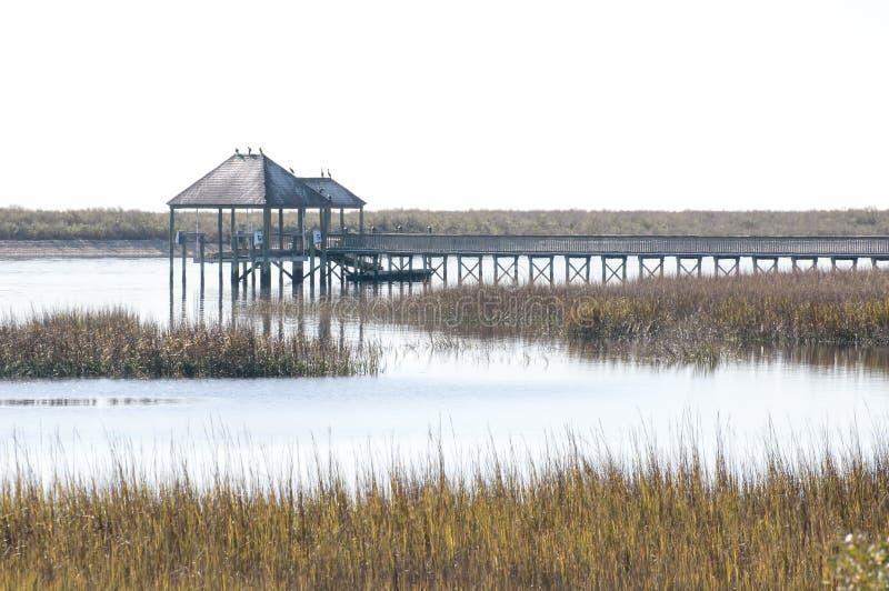 Wenig Fluss-Sumpf lizenzfreies stockbild