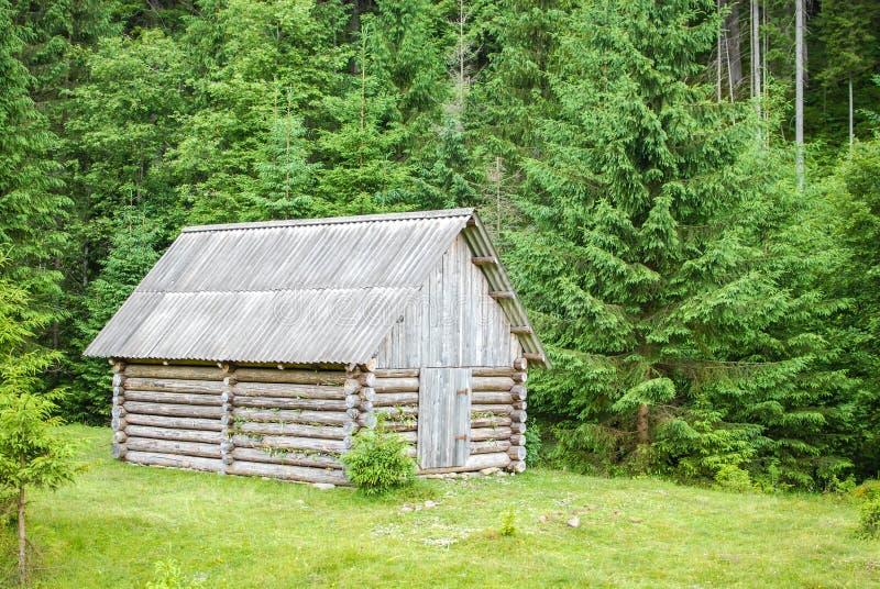 Wenig Haus im Holz stockbild