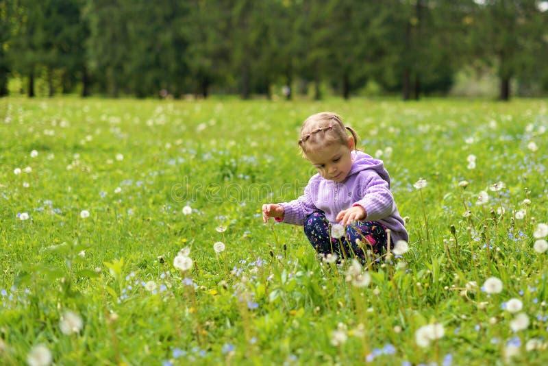 Wenig Mädchen, das auf einer grünen Wiese unter Wiesenblumen stillsteht lizenzfreie stockbilder