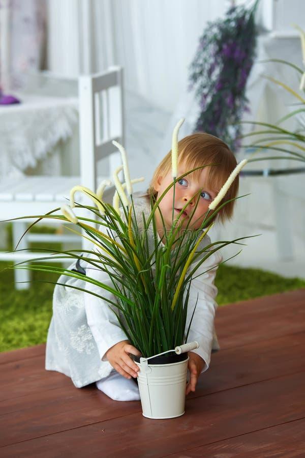 Wenig Mädchen, das einen Eimer Blumen hält lizenzfreies stockbild